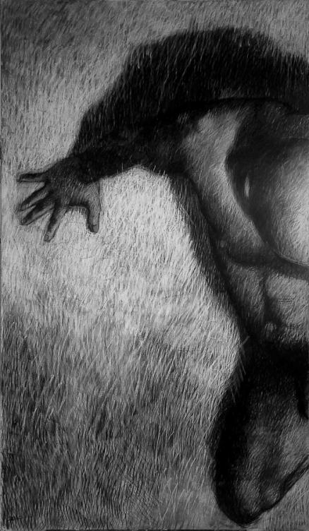 PL_Ipseidad3_162x97_mixte sur papier marouflé sur toile (900px)