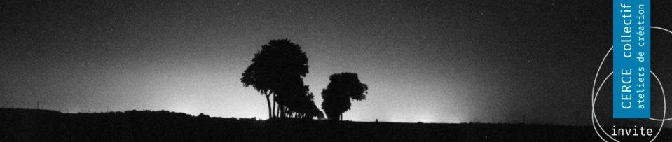 cropped-nuit-arbre-haut