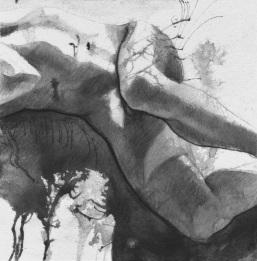 Ombre, étude 3, 2017